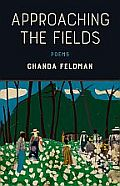Approaching the Fields