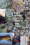 Extra Hidden Life, among the Days