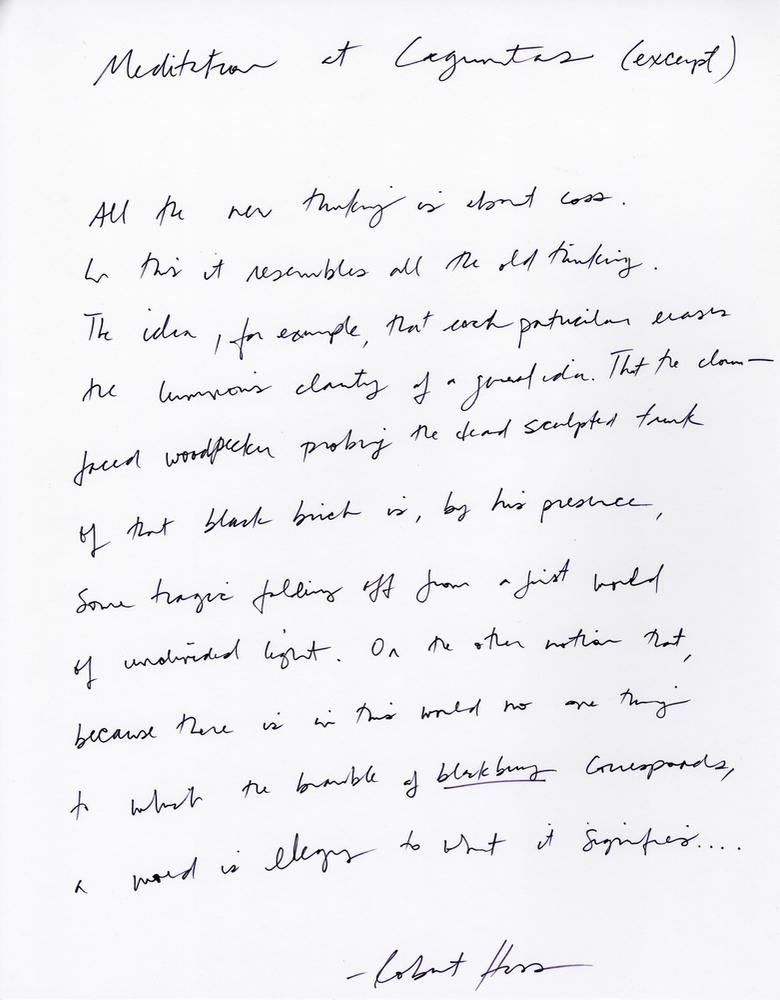 "Lines 1–11 of Robert Hass's ""Meditation at Lagunitas"" as handwritten by Jennifer Chang"