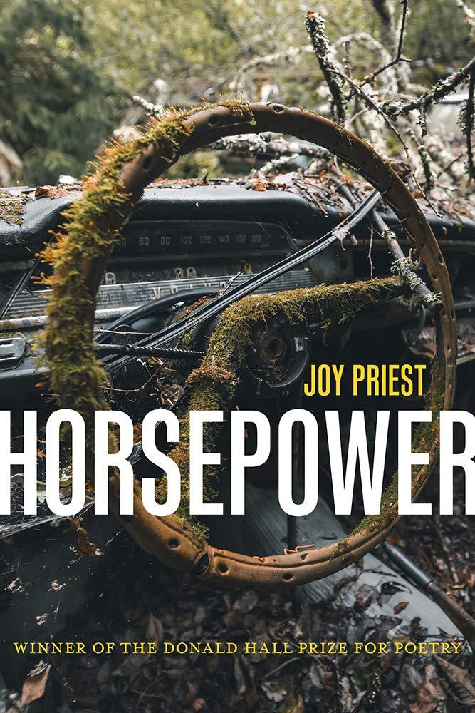 Horsepower_Joy Priest