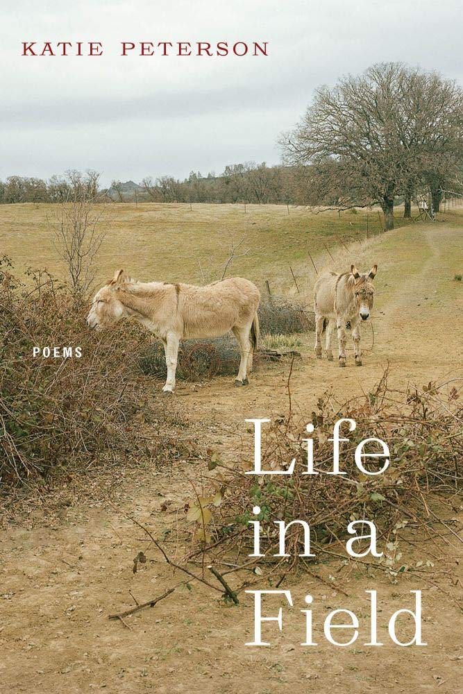 Life in a Field front cover