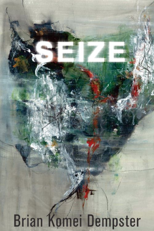 Cover of Seize by Brian Dempster