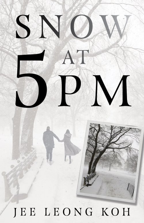 Cover of Snow at 5 PM