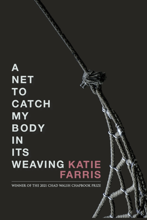cover of A Net to Catch My Body in Its Weaving