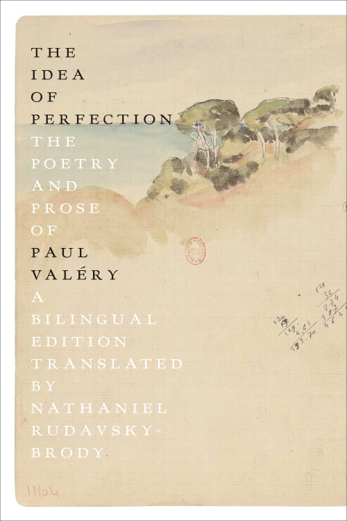 cover of The Idea of Perfection