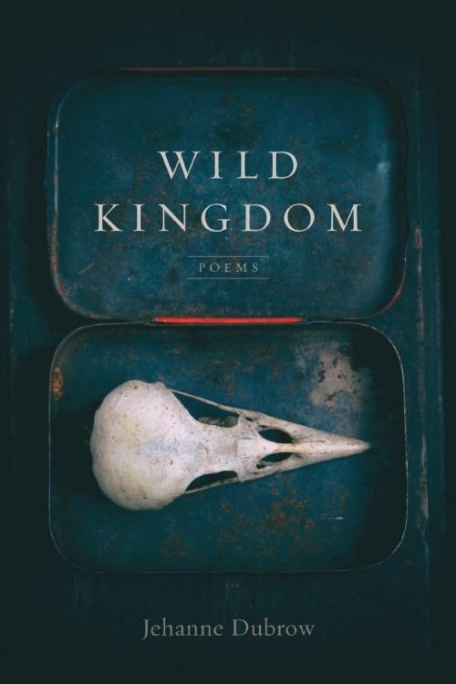 Cover of Wild Kingdom